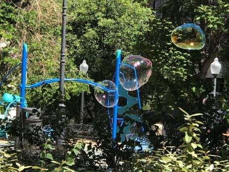 bubbles in Sotelo